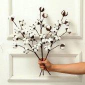 Doğal Pamuk Dallı Dekoratif Yapay Çiçek Cotton