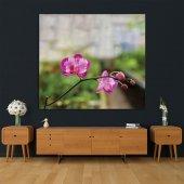 İlkbahar Orkide Çiçeği Desenli Duvar Örtüsü-5