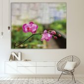 İlkbahar Orkide Çiçeği Desenli Duvar Örtüsü-6