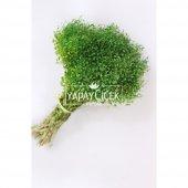Kuru Çiçek Cipso Demeti Yeşil-2
