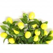 Yapay Limon Demeti 35 cm-2