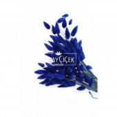 Kuru Çiçek Pamuk Otu (Yerli) Lacivert-2