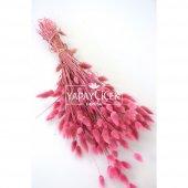 Kuru Çiçek Pamuk Otu (Yerli) Pastel Pembe