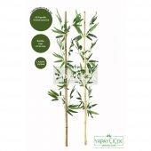 115 Cm Yapay 8 Dal Yapraklı Gerçek Bambu