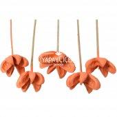 Tropic Bullet Flower Kuru Çiçek Tropik 5li Retro Somon-3