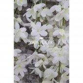 Yapay Çiçek Mine Çiçekli 5li Sarkan Beyaz 85 cm-3
