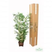Yapay Bambu Ağacı 6 Gövde 140 cm (Model8)-4