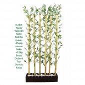 Kalın Bambu Dekoru Seperatör (20x100x230 Cm)