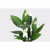 Yapay Ağaç 3 Gövdeli Spatifilyum Barış Çiçeği (Spathiphyllum) 125 cm-5