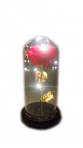 Sevgililer Günü Hediyesi Işıklı Fanus İçerisinde Kırmızı Gül