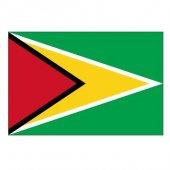 Guyana Masa Bayrağı (Direğiyle Birlikte)