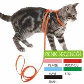Kedi Gezdirme Göğüs (Bel) Tasması Renk...