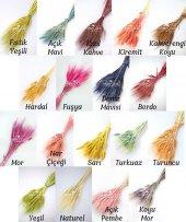 Kuru Çiçek Doğal Başak Demeti 45 Kafalı 18 Renk...