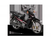 MOTORAN TORRO LX 100 ORTA SEHPA-2