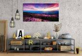 zz227 Gün Işıkları Pembe Çiçekler Panoramik Kanvas Tablo
