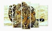 Leopar 5 Parçalı Kanvas Tablo leopar
