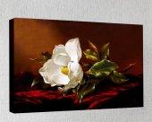 Kanvas Tablo Çiçek Resimleri C118