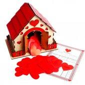 Romantik Aşk Evi
