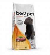 Bestpet Delicious Puppy Biftek Ve Kuzu Etli...