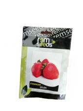 Rem Seeds Vista Çilek Tohumu 0.1gr 1 Paket