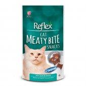 Reflex Cat Pocket Dental Ördekli Diş Ve Ağız Sağlığı Kedi Ödülü 60 Gr