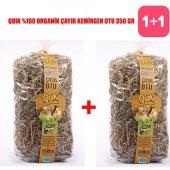 Quik 100 Organik Çayır Kemirgen Otu 350 gr