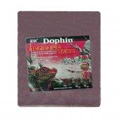 Dophin Reptile Sand Kırmızı Sürüngen Kumu Taban...