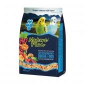 Meyve Aromalı Ve Ballı Muhabbet Kuş Yemi 500 Gr