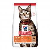 Hills Optimal Care Kuzu Etli Yetişkin Kedi...