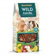 Wild Kemirgenler Için Fruit Mix 165 Gr.