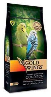 Gold Wings Premium Muhabbbet Kuşu Kondisyon...