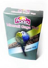 Pogo Mineralli Gaga Taşı