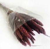 Çiçek Doğal Steria Boncuk Mor (100 Gram) 1 Demet Fiyatıdır