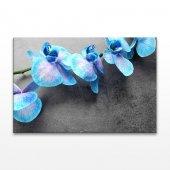 Mavi Orkide Kanvas Tablo