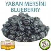 Blueberry Orjinal Mavi Yaban Mersini 250 Gr 500...