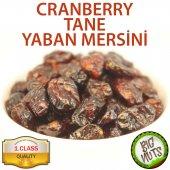Cranberry Tane Yaban Mersini Turna Yemişi 500gr...