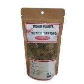 Word Plants Tetra Yaprağı (Duman Ağacı) 40 Gr...