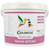 Colorize Profesyonel Tavan Boyası 17.5 Kg