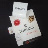 Ferrucci 8680005158723 Hasır Kordonlu Sevgili Çift Kol Saatleri-4