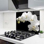 Orkide Cam Ocak Arkası Koruyucu