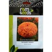 Top Kadife Çiçek Tohumu Turuncu Renk Tagetes Erecta Orange (Takribi 50 Tohum)