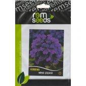 Mine Çiçeği Tohumu 1 Verbena (Takribi 40 Tohum)...