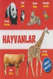 Hayvanlar Türkçe İngilizce Kolektif Parıltı Yayınları