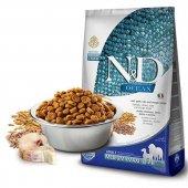 Nd Ocean Düşük Tahıllı Balıklı Adult Medium Maxi Köpek Maması 2,5 Kg