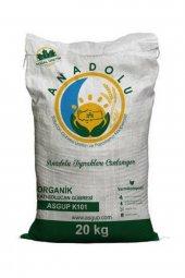 Asgup K101 Organik Katı Solucan Gübresi 20 Kg