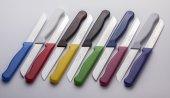 1.kalite Solingen Meyve Bıçağı Simli Saplı (1 Takım 6 Adettir)