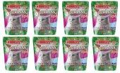 Odorless Extra 3,8 L Tam Koli (8 X 3,8 L)