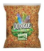 Jungle Poşet Muhabbet Kuşu Yemi 1 Kg