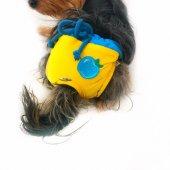 Yellow Blue Apple Secret Köpek İç Çamaşırı Regl Külot Don-2