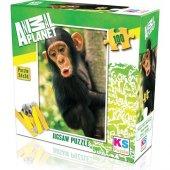 Ks Games Animal Planet Baby Chimp